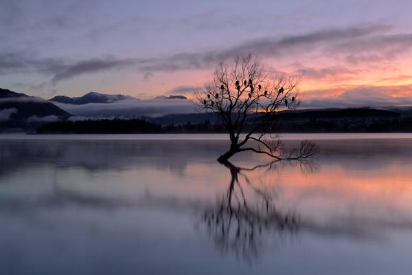 Dawn by kevinwpayne