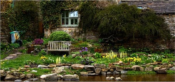 Riverside garden by Alison_S