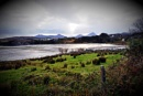 donegal by williamsloan