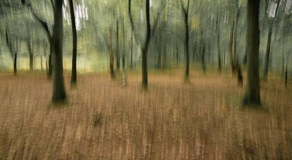 Riding Through The Glen by Fefe
