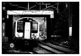 Photo : The Slow Train