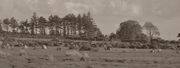 Stones In Sepia by woodini254