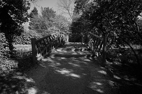 Bridge, Manor By The Lake
