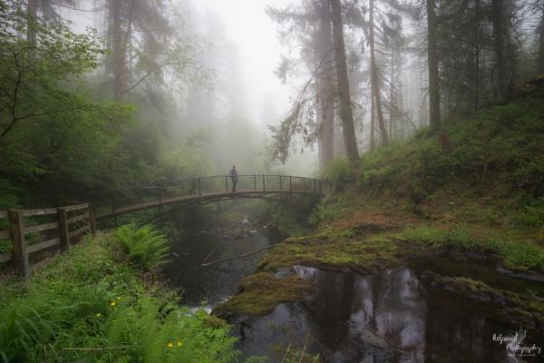 Glenariff in the mist by PMWilliams