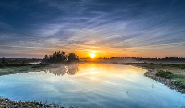 Slufters Wispy Sunrise