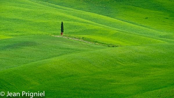 Spring in Toscane by Jprigniel