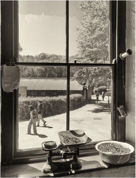 Museum windows. by franken