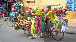 Street vendor selling flowers, Hoi An, Vietnam