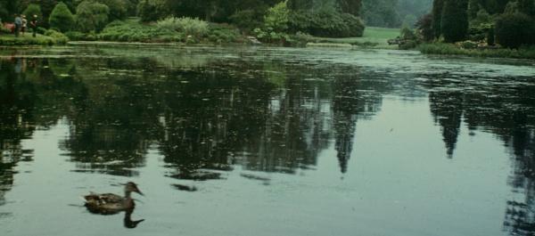 LAKE by SOUL7