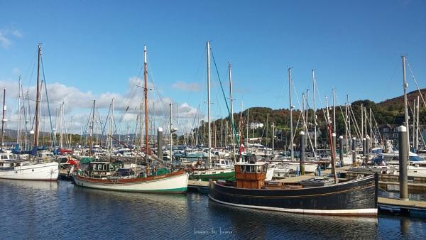 Boats-A-Plenty. by Tooma