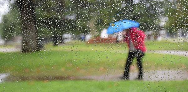 Paraguas azul. by femape