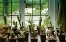 In the Shop Window by helenlinda