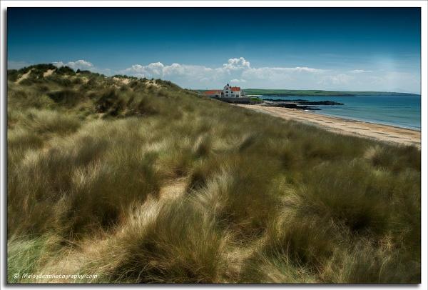 Beach House by Techno