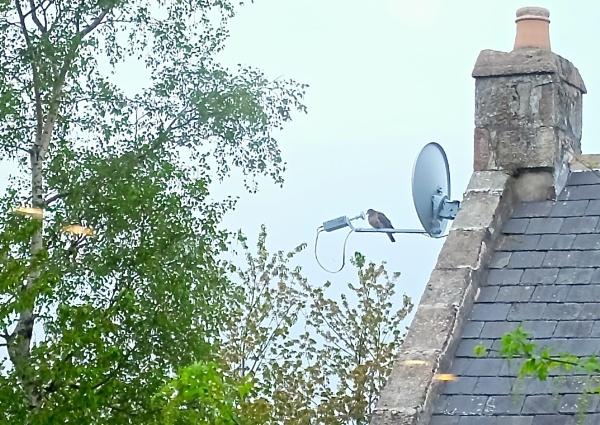 21st Century Communication in rural Scotland