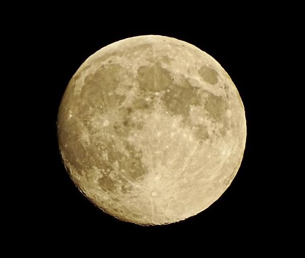 moon by Cephus