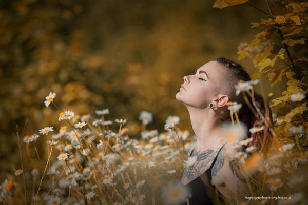 Suns rays by imagesbystephendavis