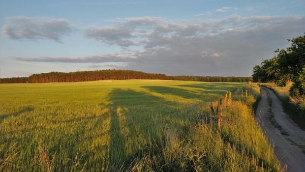 POLAND - Nature\'s Impressions No.97 by PentaxBro