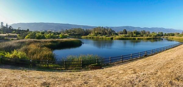 The Lake by louneson