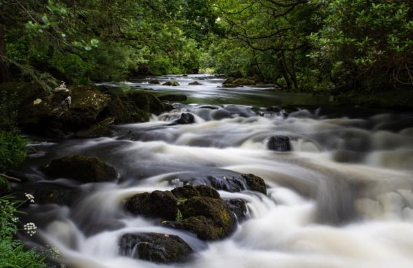 The Cascades at Lauragh, Beara Peninsular, Ireland by BobinAus