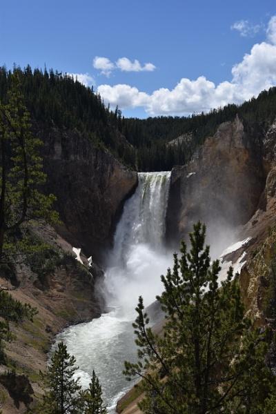 Lower Falls, Yellowstone by lambertphotos