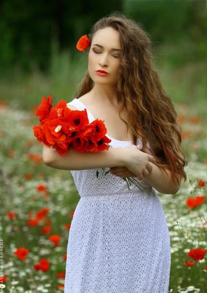 poppy love by laviniaiordache