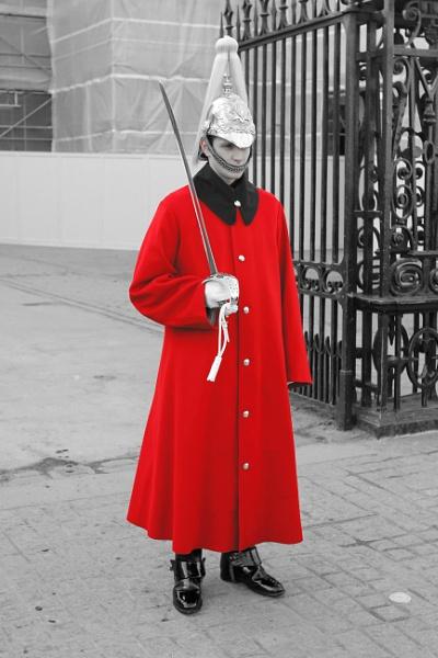 Colour clip guard by Trekmaster01
