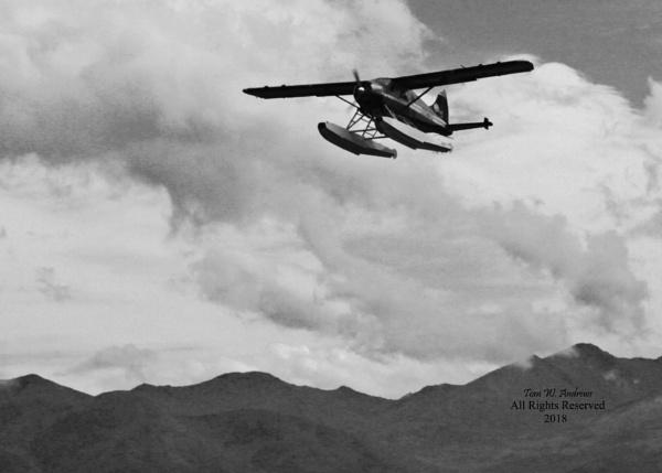 Floatplane Departing by f4fwildcat