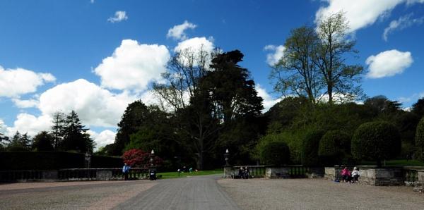 mount stewart  gardens by williamsloan