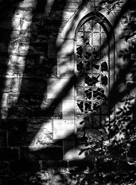 Window Detail by optimist950