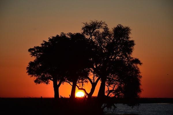 Chobe River Sunset - BOTSWANA by doolittle