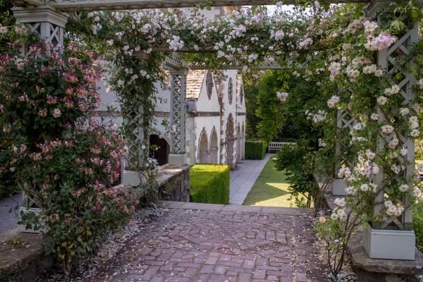 Rose Covered Pergola by bwlchmawr