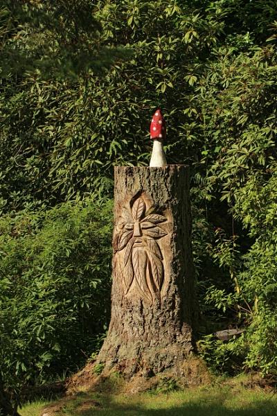 Woodland Fun by canoncarol