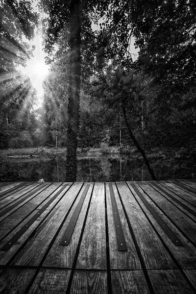 boardwalk in the sun by meyeview