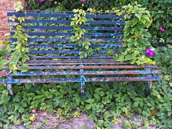 Take a seat .. by chrisdunham