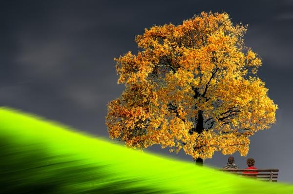 Alpine Autumn by SamCampbell