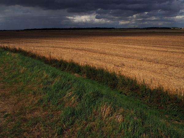 Stubble Field by ericfaragh