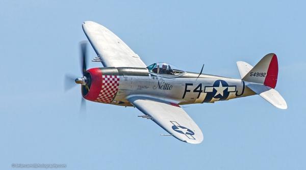 Republic P-47 Thunderbolt by brian17302