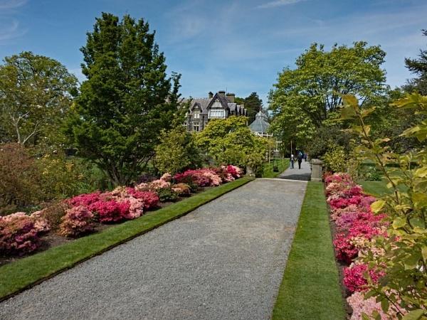 Bodnant Garden 447 by jim_horsfield