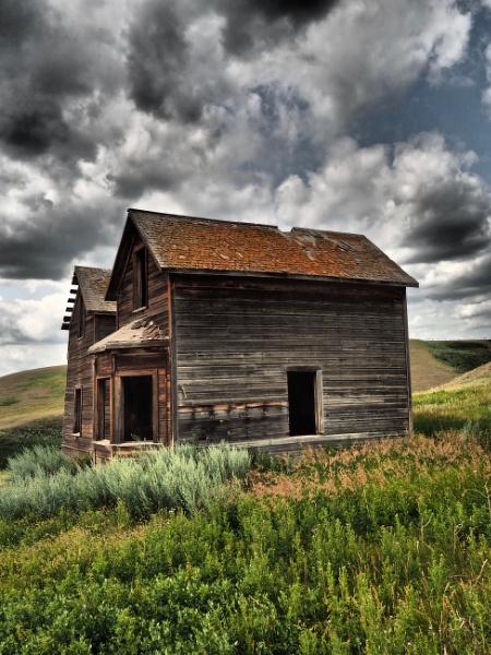 The sagebrush  house by waltknox