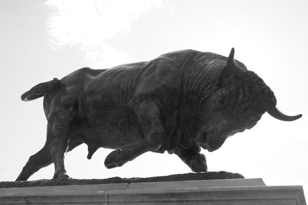 "~ \""The Bull II\"" by LexEquine"