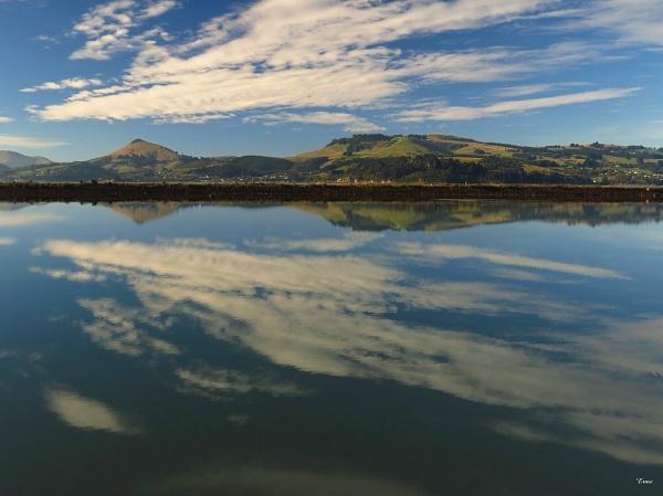 Otago Harbour 15 by DevilsAdvocate