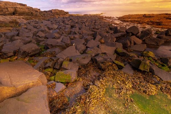 Rocks At Newbiggin by mmart