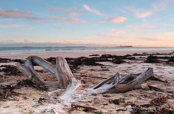Bamburgh Beach by TeresaGraham
