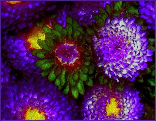 petals galore... by estonian