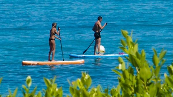 Paddle Boarders by Charliemc55