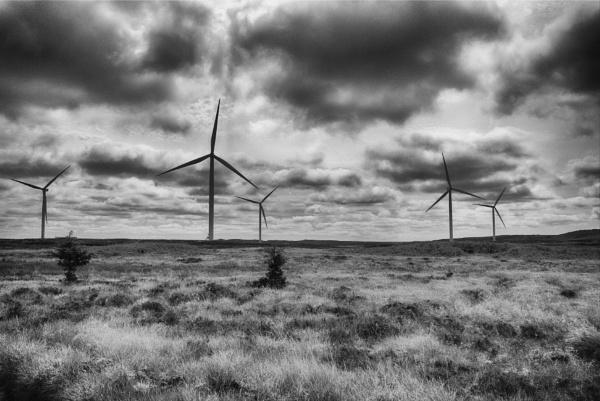 The Windfarm by Backabit