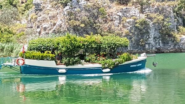Garden Boat.. by Suzie69