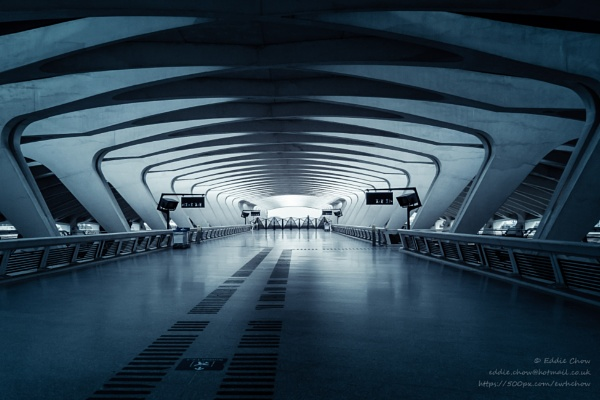 Gare de Lyon Saint-Exupery (I) by chowe328