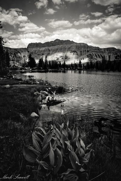 Dark Mountain by mlseawell