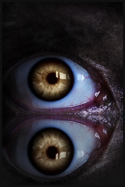 The Eyeball Cave